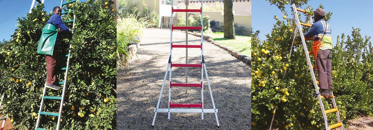 Cool Living Fruit Picking Ladders Strong and Lightweight