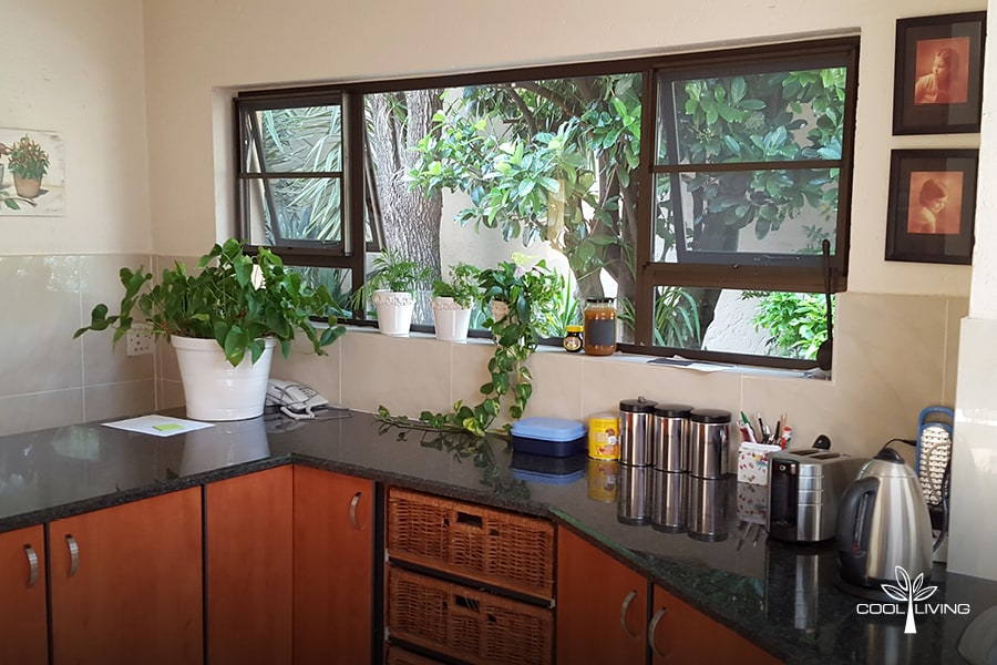 Insect and Monkey Window Screens for your kitchen