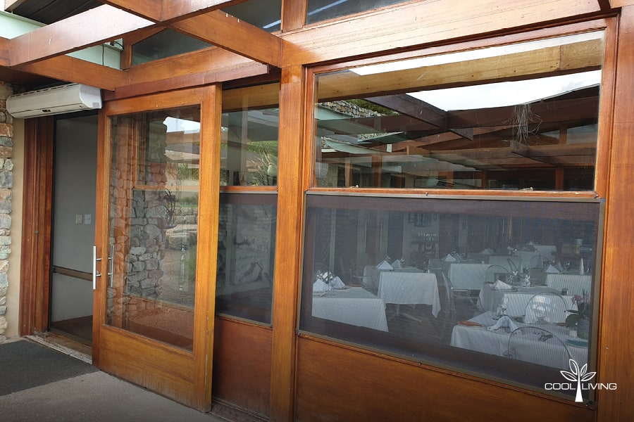 Insect and Monkey - Window Fixed Panel Screen for a restaurant